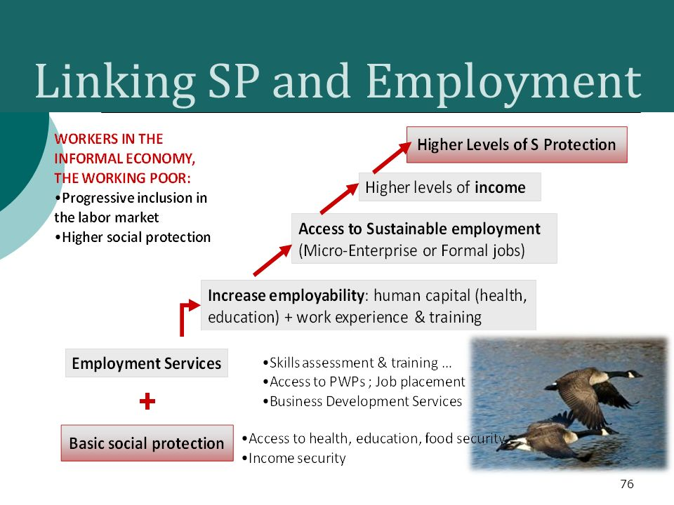 Linking SP and Employment