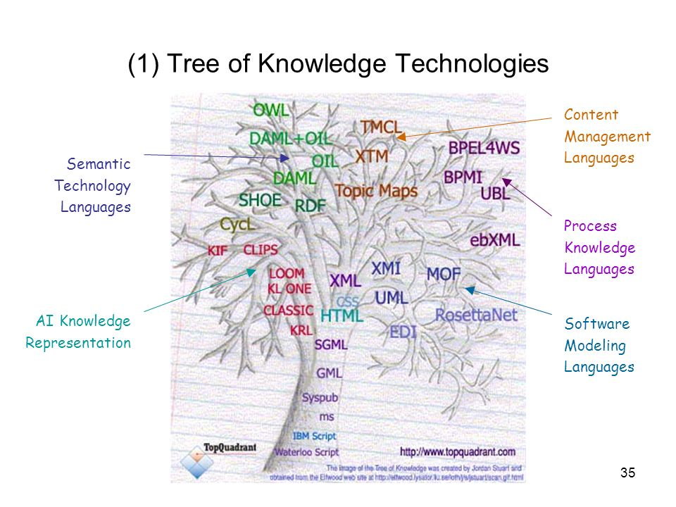(1) Tree of Knowledge Technologies