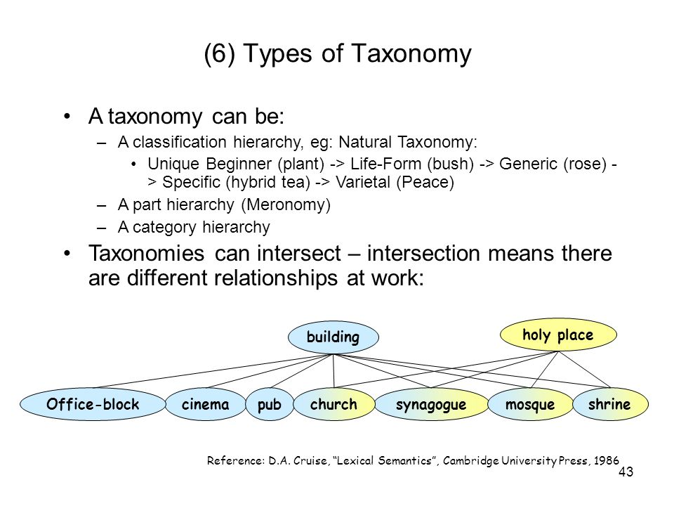 (6) Types of Taxonomy A taxonomy can be: