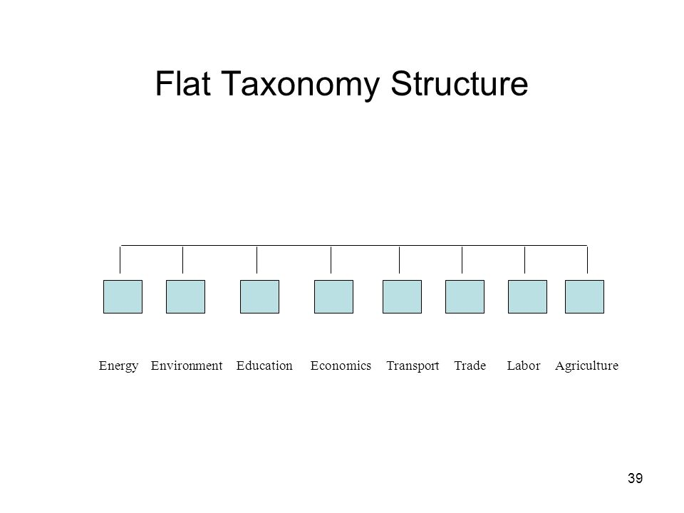 Flat Taxonomy Structure