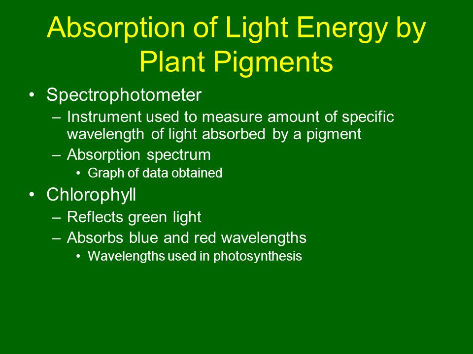 absorption spectrum for leaf pigments The visible spectra of plant pigments advanced biology with vernier 13 - 5 data analysis 1 describe, in detail, the spectrum of each food coloring sample.