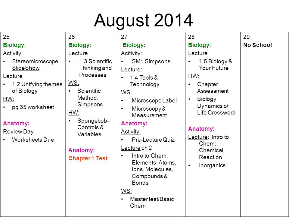 August First Day of School Biology Syllabus Anatomy ppt download – Simpsons Scientific Method Worksheet