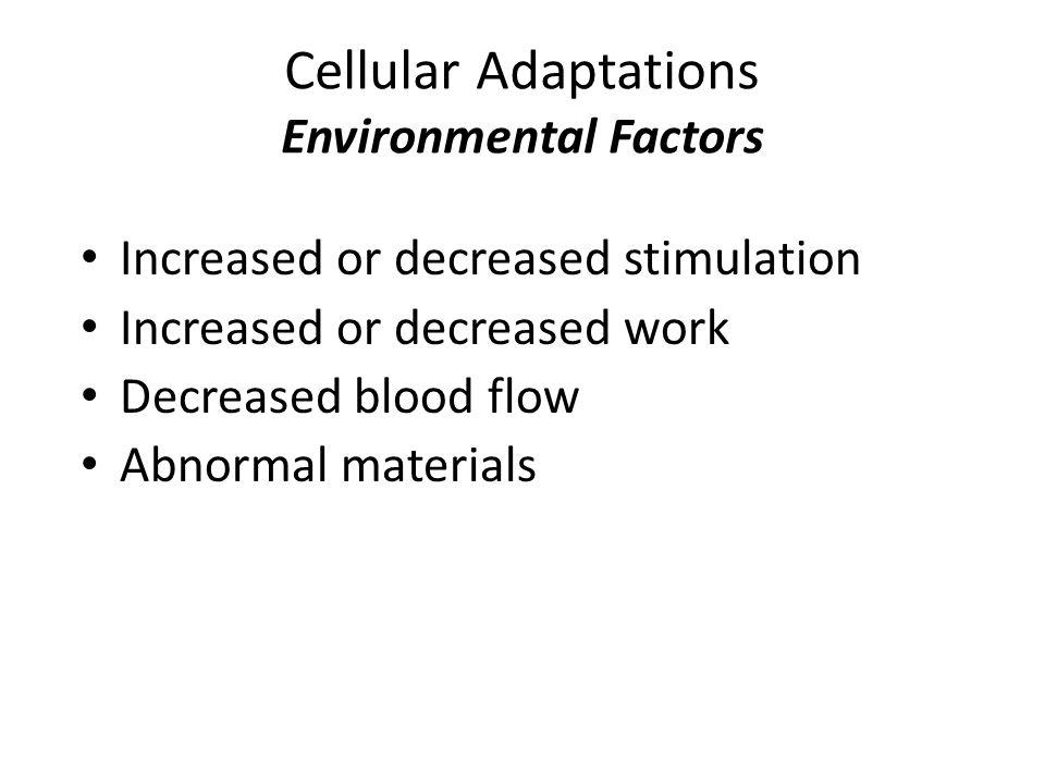 Cellular Adaptations Environmental Factors