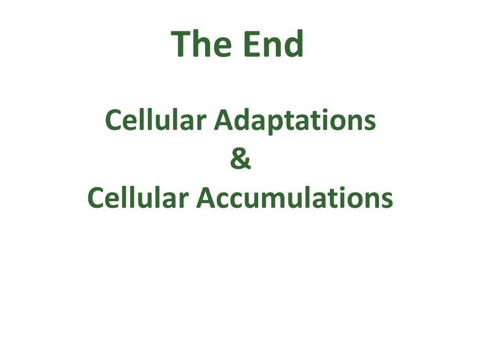Cellular Accumulations