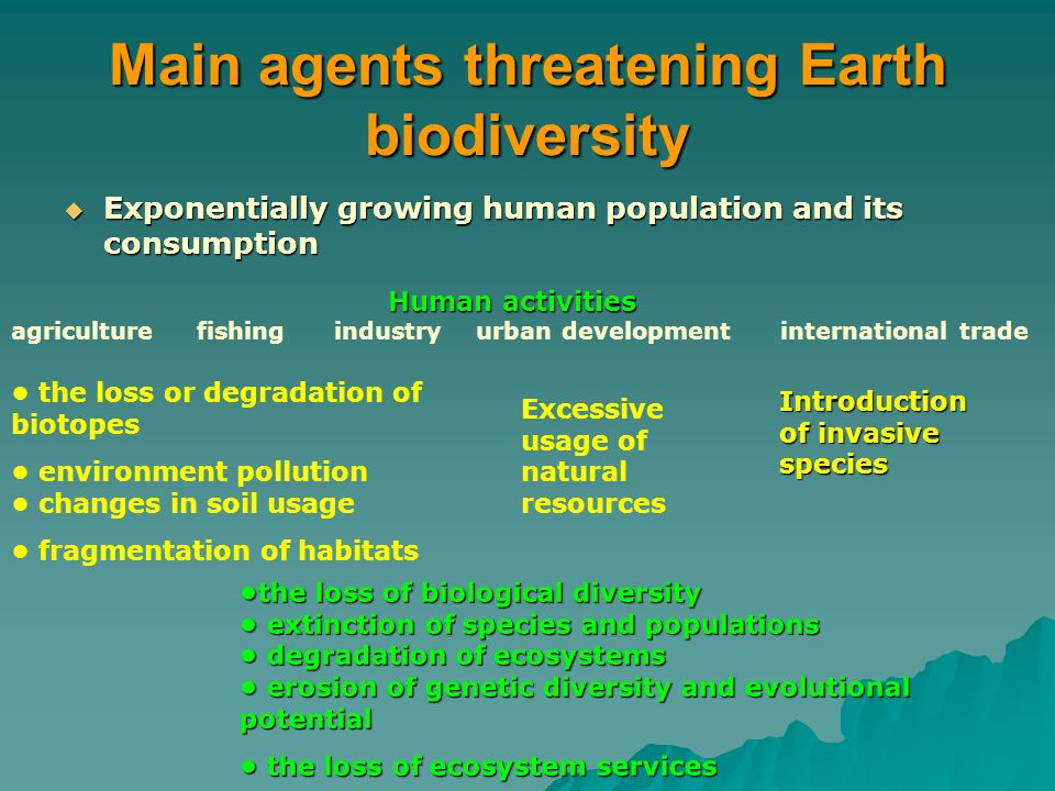Trade-offs across space time and ecosystem services