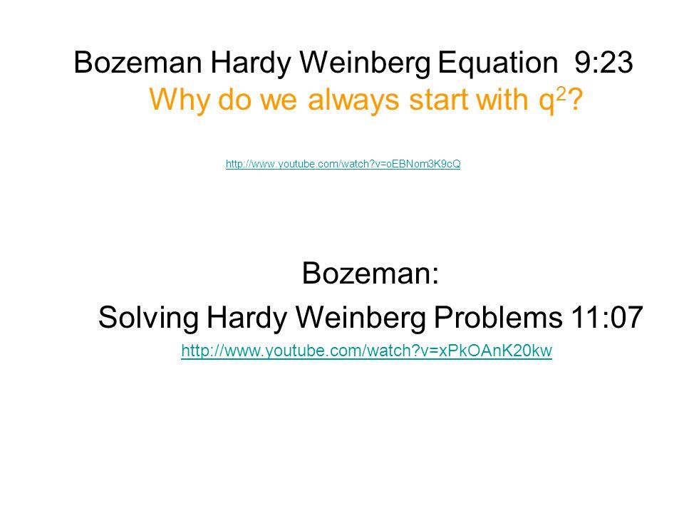Hardy Weinberg Equation Problems Jennarocca – Hardy Weinberg Problems Worksheet