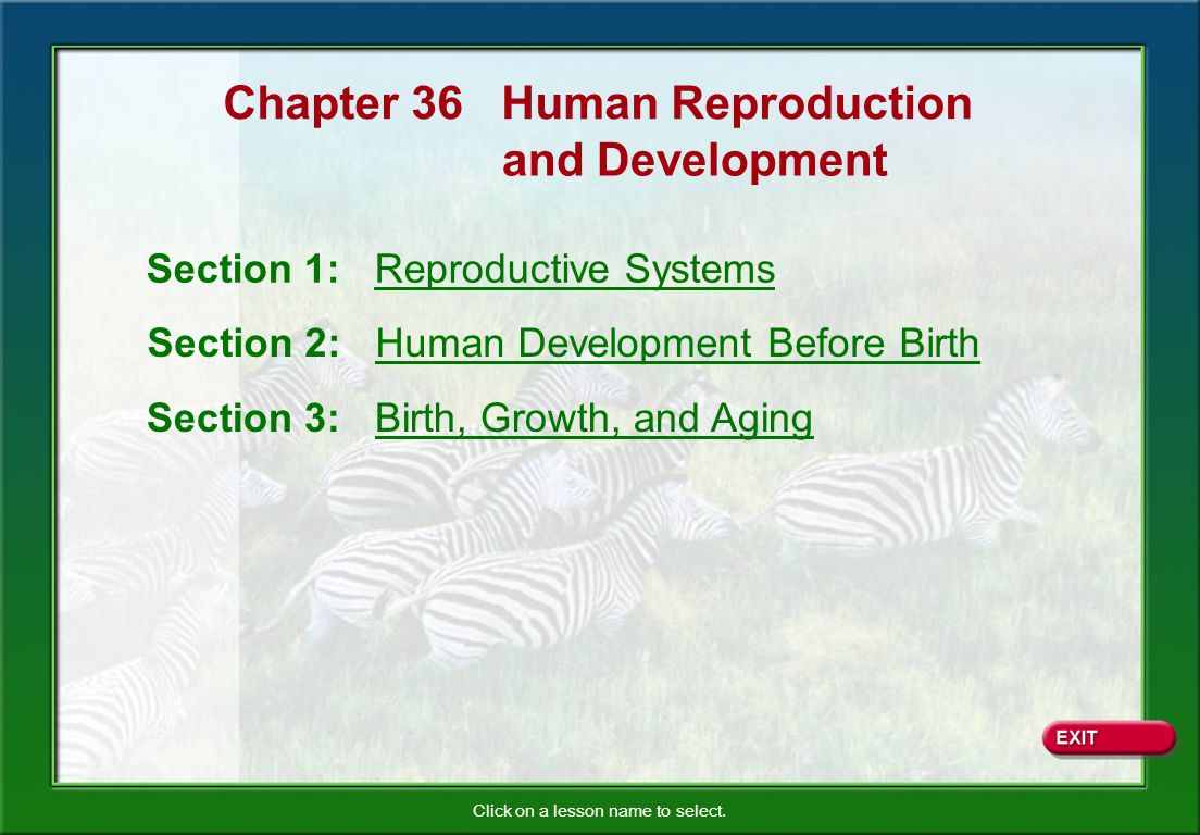 ch 25 the reproductive systems and Human physiology/the female reproductive system from wikibooks, open books for an open world  human physiology this is the latest reviewed version, checked on 15 july 2018 quality: minimal jump to navigation jump to search editing of this page by new or unregistered users is currently disabled due to vandalism see the.