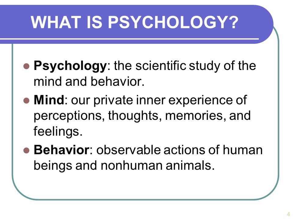 Essay about Psychology: The Study of Behavior and Mental ...