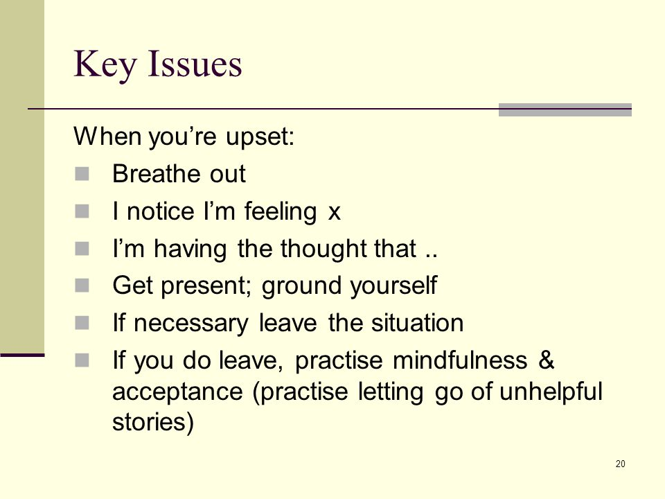 Key Issues When you're upset: Breathe out I notice I'm feeling x