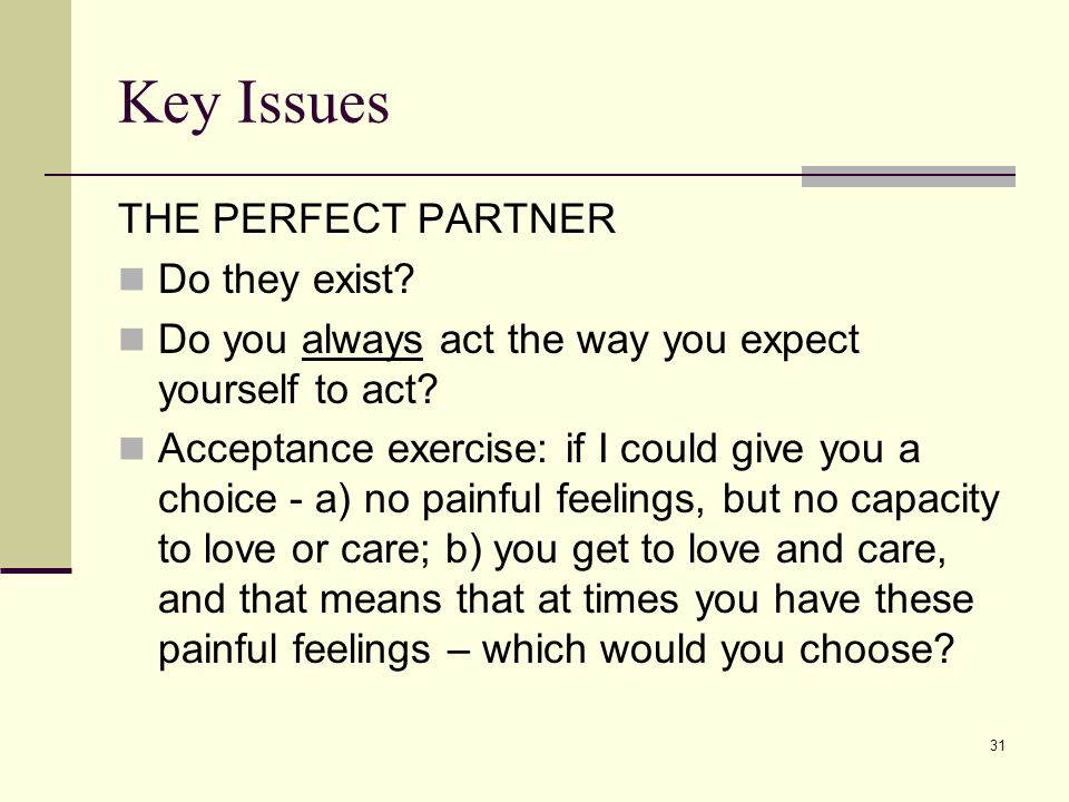 Key Issues THE PERFECT PARTNER Do they exist