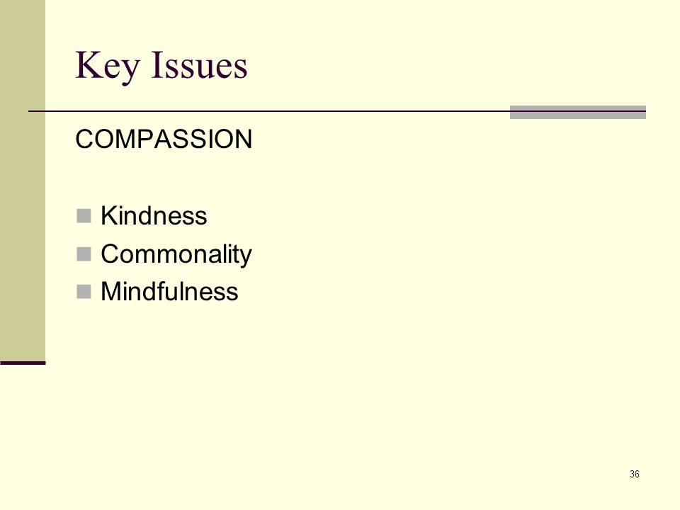 Key Issues COMPASSION Kindness Commonality Mindfulness