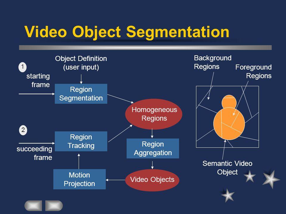 Video Object Segmentation