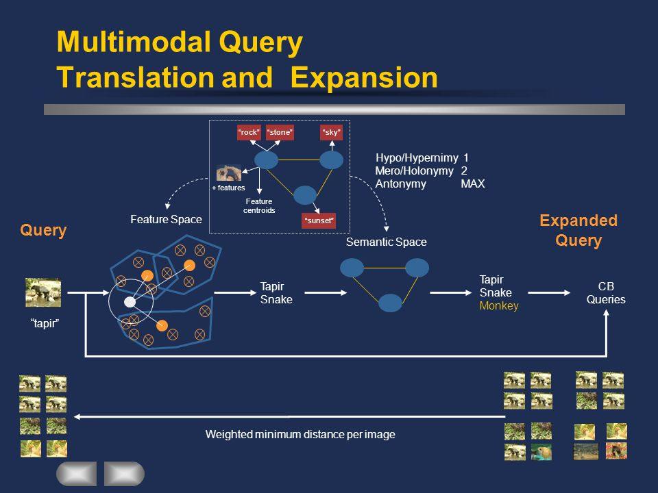 Multimodal Query Translation and Expansion