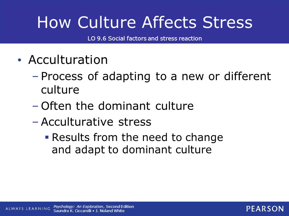 adapting to a new culture Integrating cultures after a merger integrating cultures is like a $200 million synergy then comes the difficult work of co-creating the new culture.