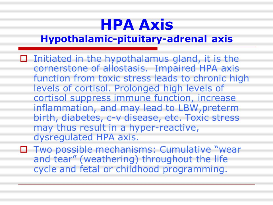 hypothalamic pituitary adrenal axis pdf