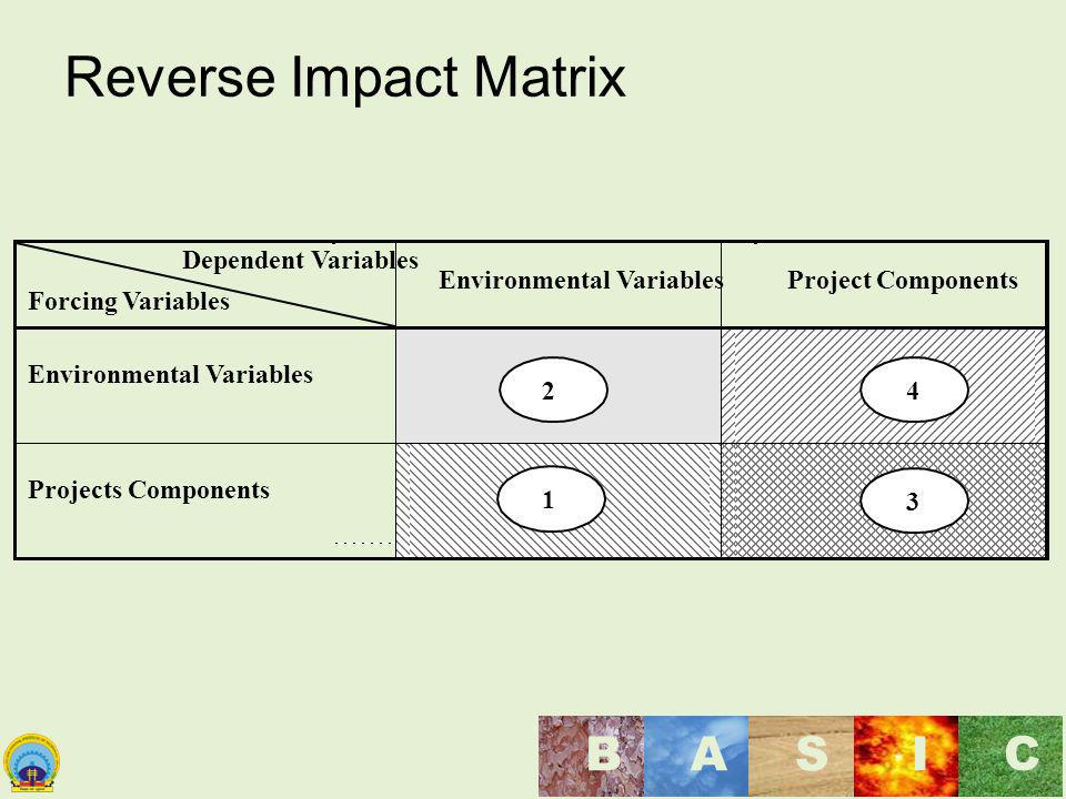 Reverse Impact Matrix Dependent Variables Forcing Variables