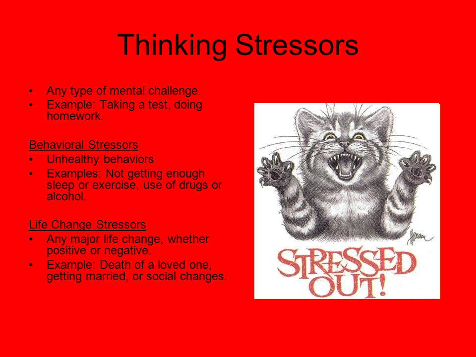 Thinking Stressors Any type of mental challenge.
