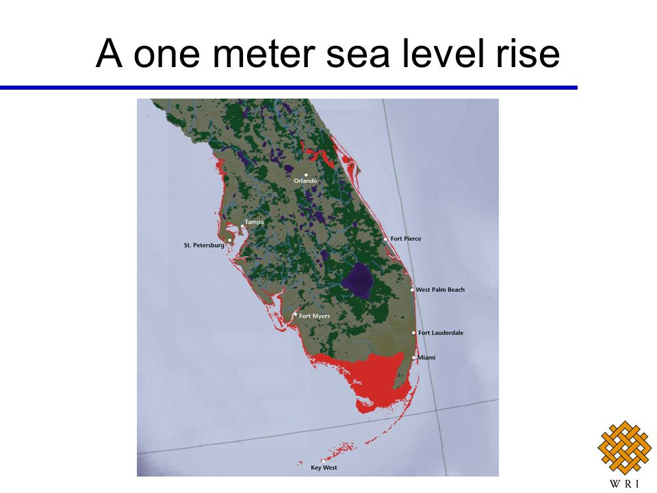 A one meter sea level rise