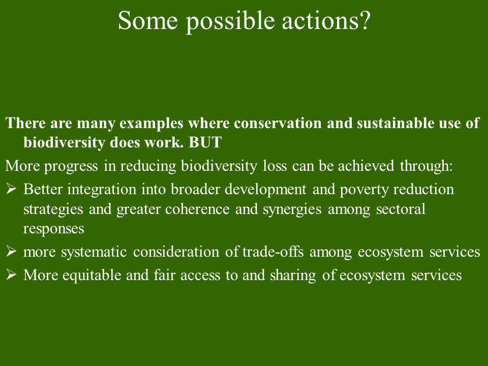 Some possible actions There are many examples where conservation and sustainable use of biodiversity does work. BUT.