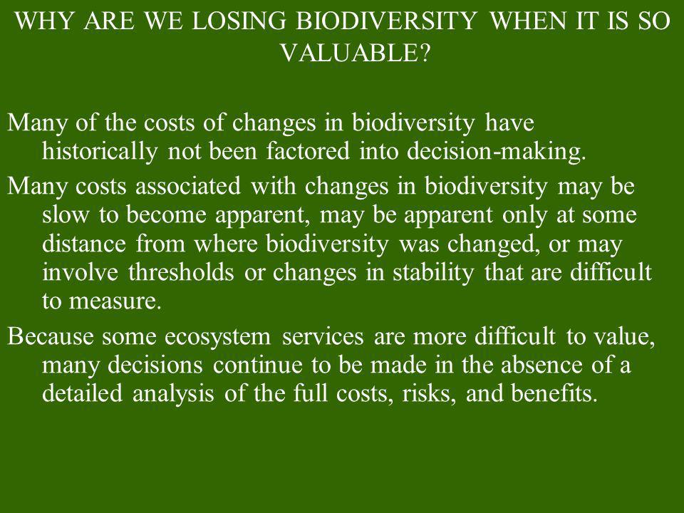 WHY ARE WE LOSING BIODIVERSITY WHEN IT IS SO VALUABLE