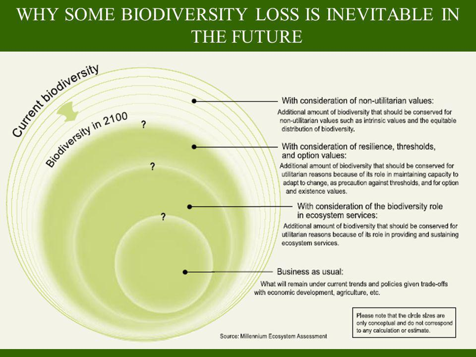 WHY SOME BIODIVERSITY LOSS IS INEVITABLE IN THE FUTURE