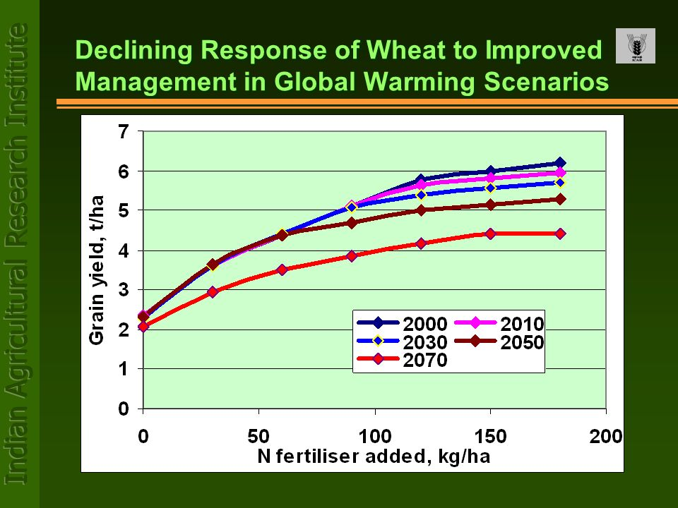 Declining Response of Wheat to Improved Management in Global Warming Scenarios