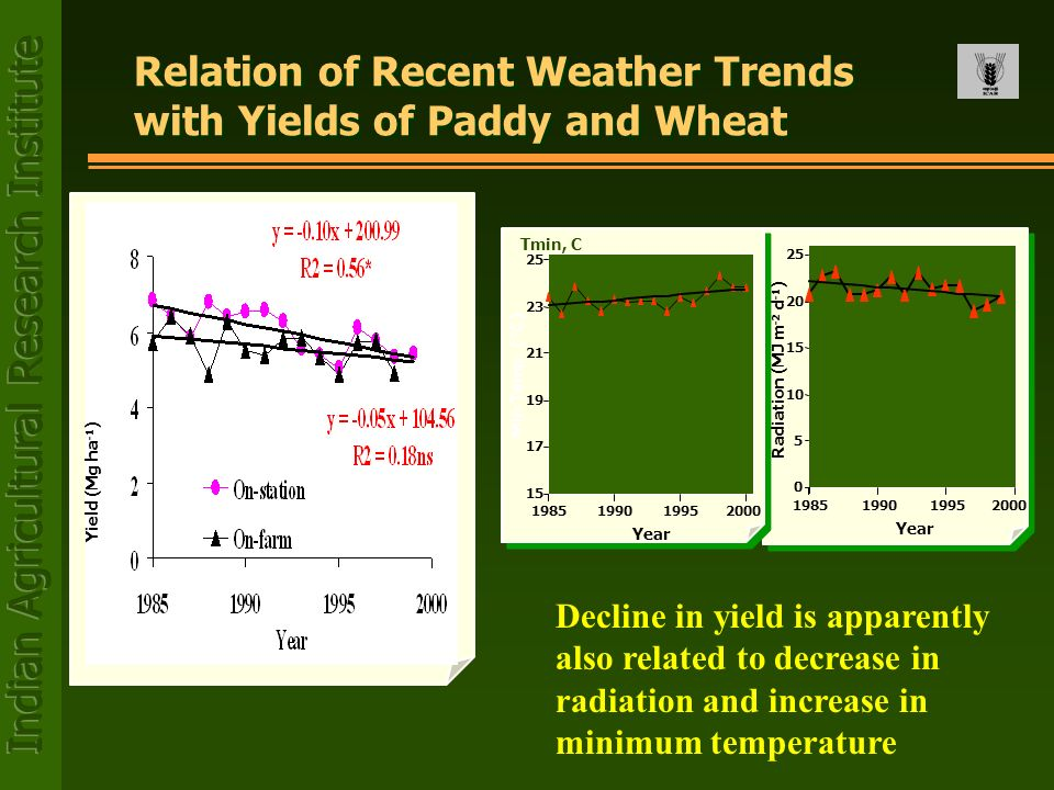 Relation of Recent Weather Trends with Yields of Paddy and Wheat