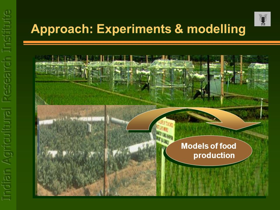 Approach: Experiments & modelling
