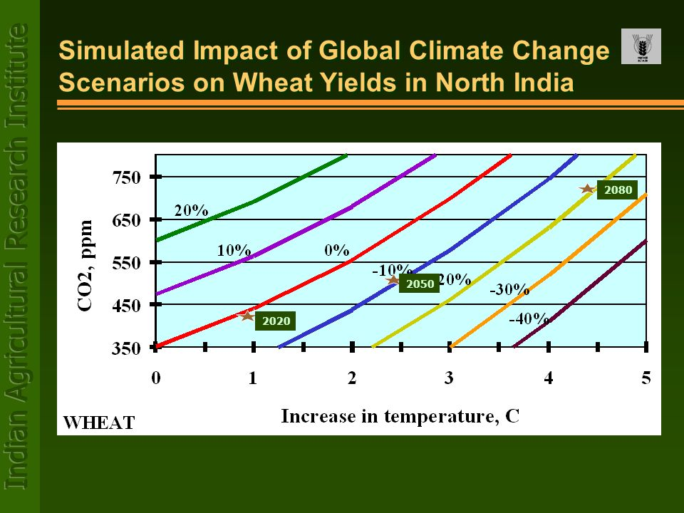 Simulated Impact of Global Climate Change Scenarios on Wheat Yields in North India
