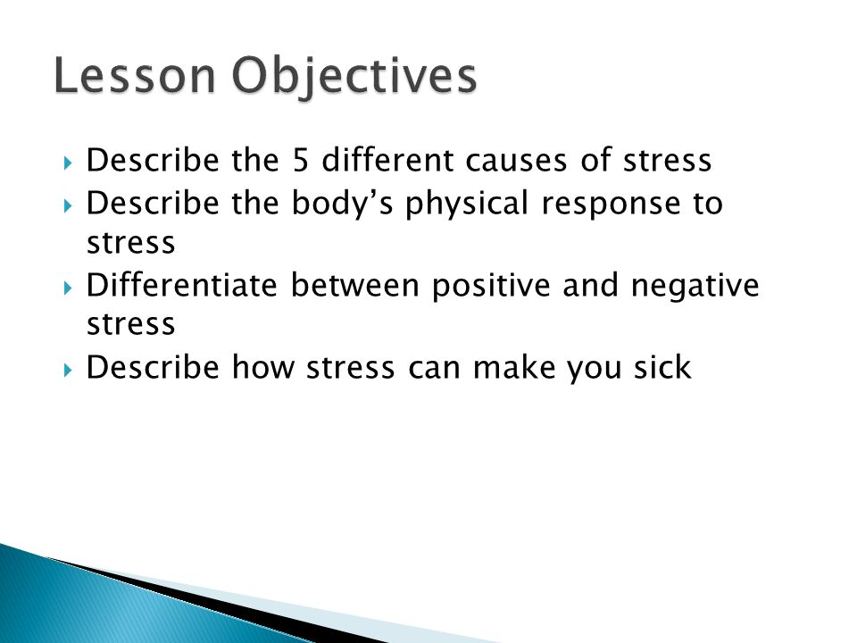 Lesson Objectives Describe the 5 different causes of stress