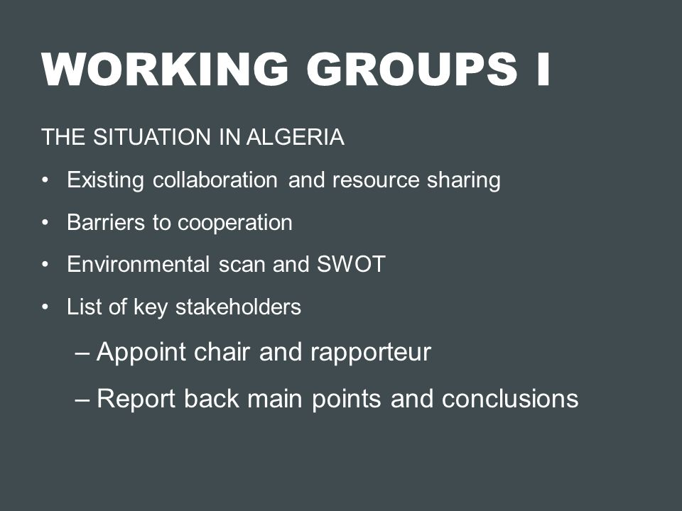 WORKING GROUPS I Appoint chair and rapporteur