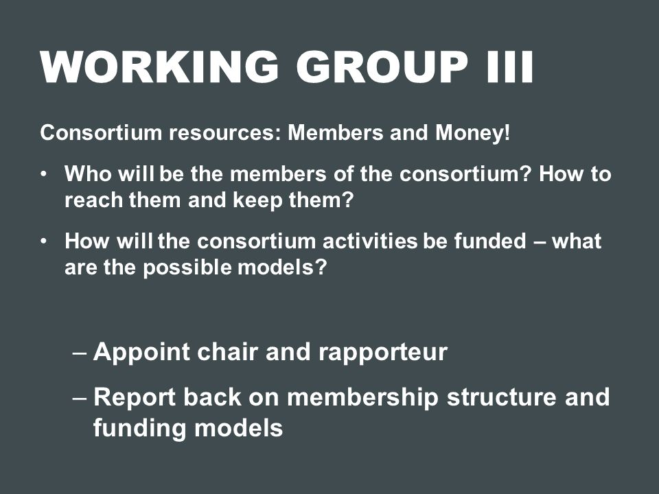 WORKING GROUP III Appoint chair and rapporteur