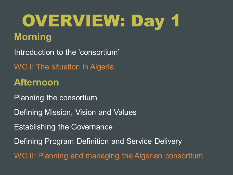 OVERVIEW: Day 1 Morning Afternoon Introduction to the 'consortium'