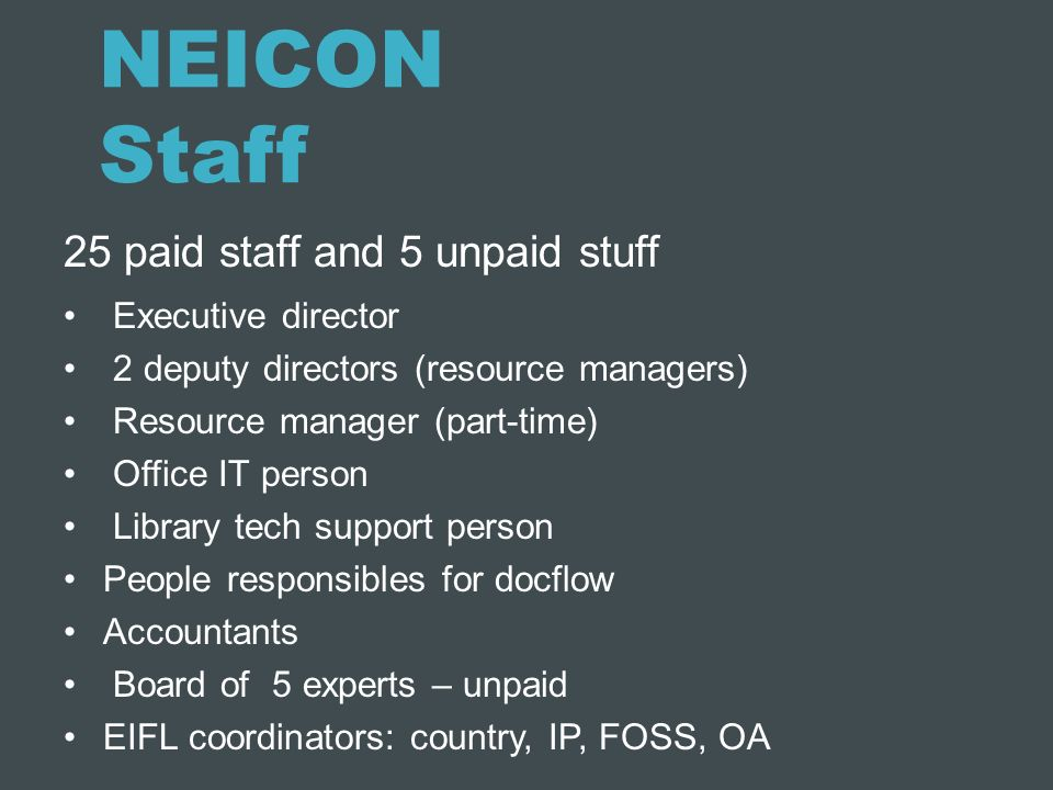 NEICON Staff 25 paid staff and 5 unpaid stuff Executive director