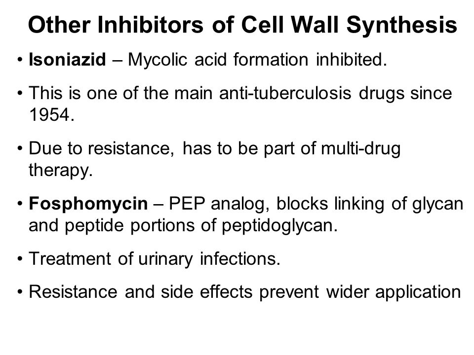 cell wall synthesis inhibitors pdf