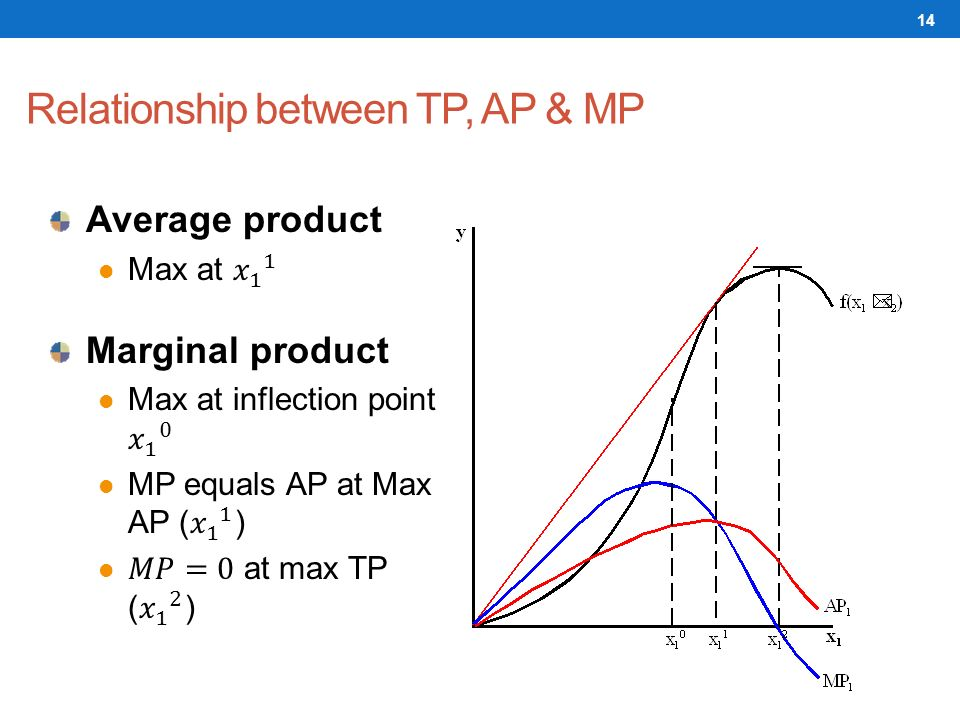 explain the relationship between marginal product and average product Explain the relationship between total, marginal, and average product distinguish between fixed, variable, and total costs explain the difference between average and marginal costs.