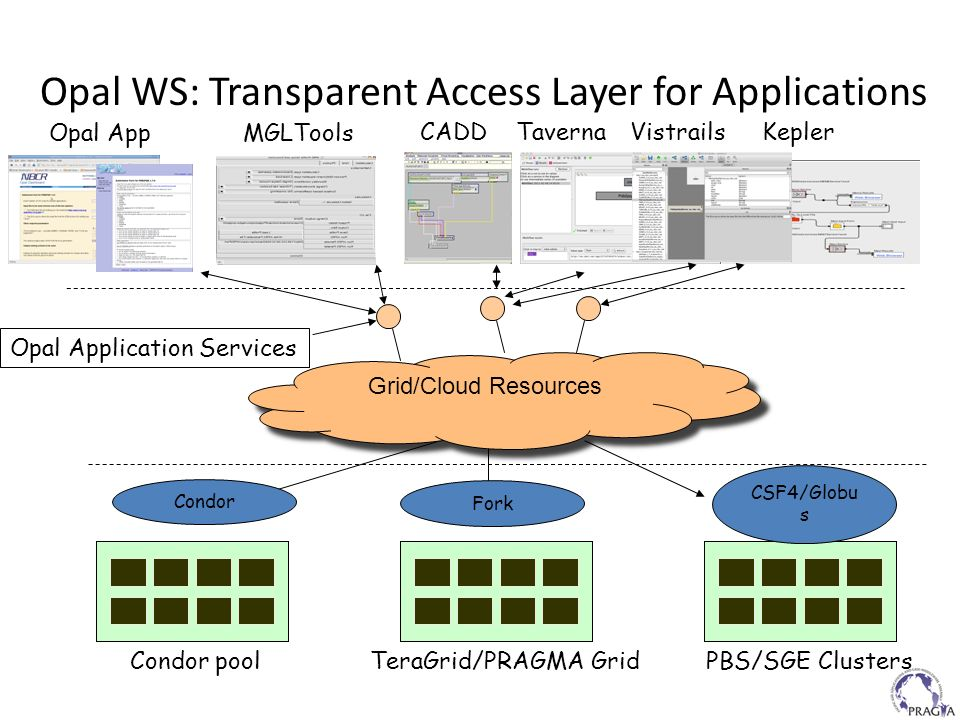 Opal WS: Transparent Access Layer for Applications