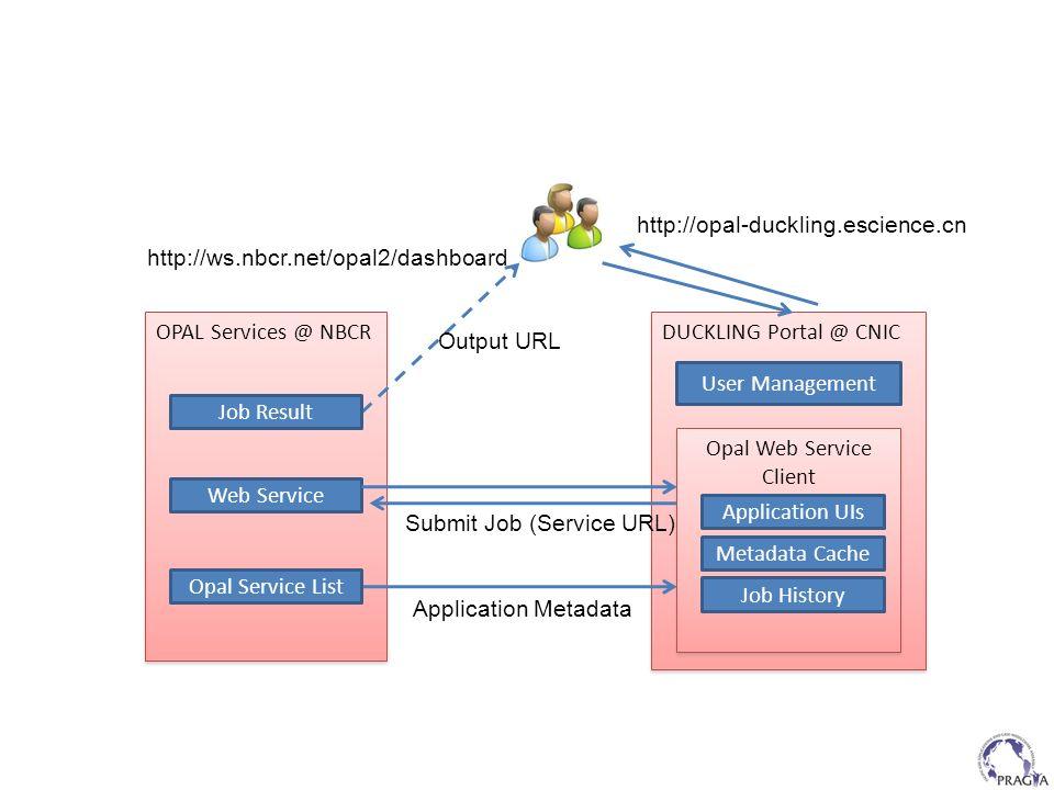 Opal Web Service Client