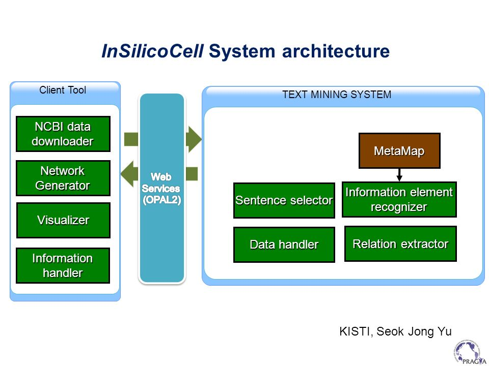 InSilicoCell System architecture