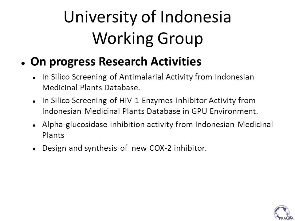University of Indonesia Working Group