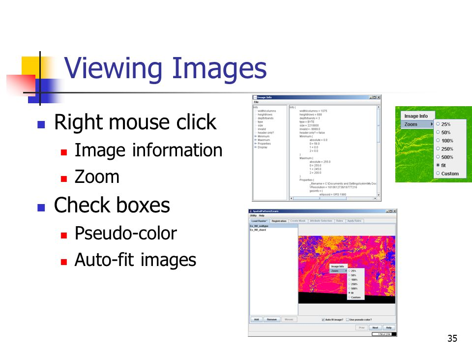 Viewing Images Right mouse click Check boxes Image information Zoom
