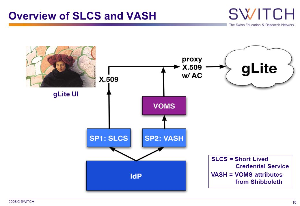 Overview of SLCS and VASH