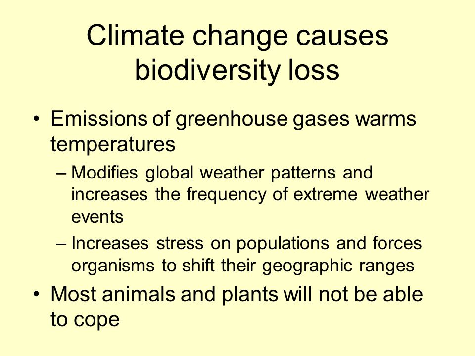 loss of biodiversity and extinction of plants animals and other liivng things This is part of the diversity of living things that we describe as biodiversity biodiversity encompasses not just the array of different plant and animal species found on the planet, but also the variation between different populations and individuals at the genetic level that may (though not always) be seen as physical differences.
