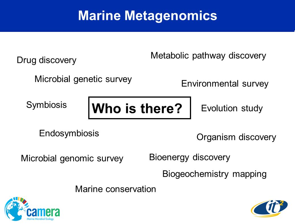 Who is there Marine Metagenomics Metabolic pathway discovery