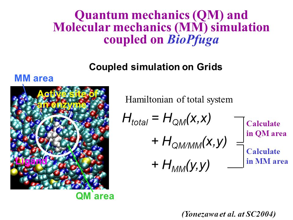 Coupled simulation on Grids