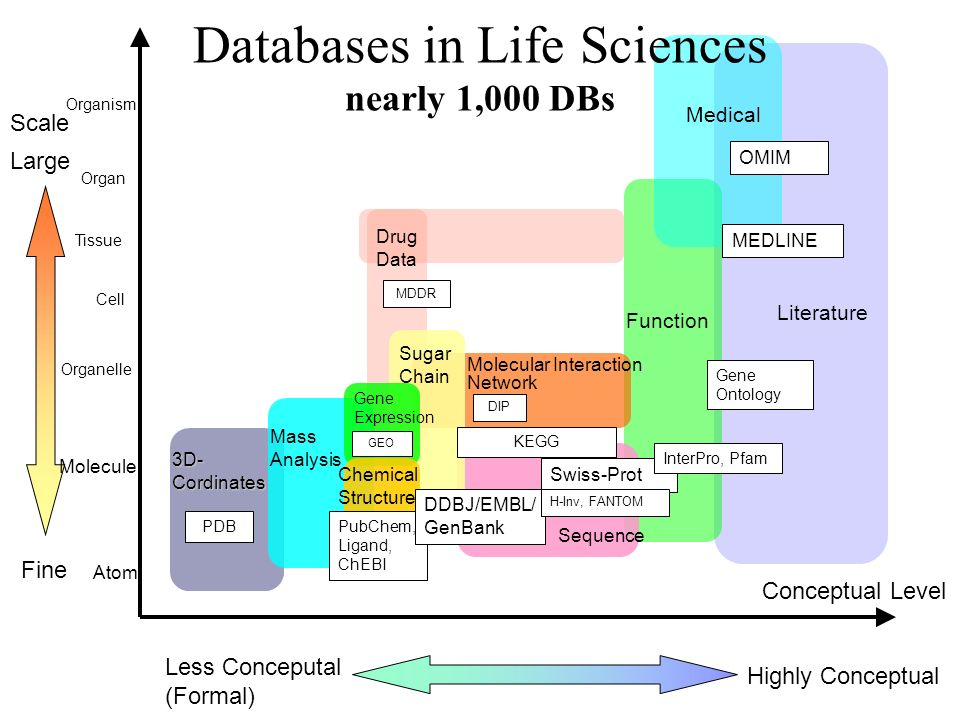 Databases in Life Sciences nearly 1,000 DBs