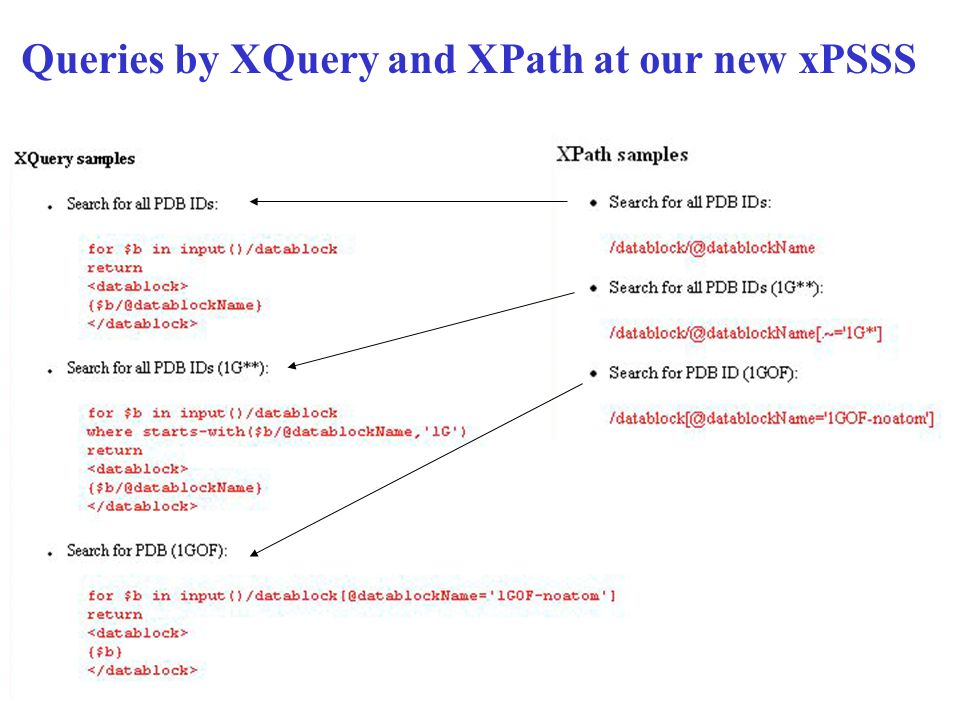 Queries by XQuery and XPath at our new xPSSS