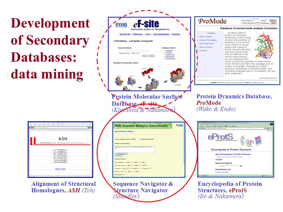 Development of Secondary Databases: data mining