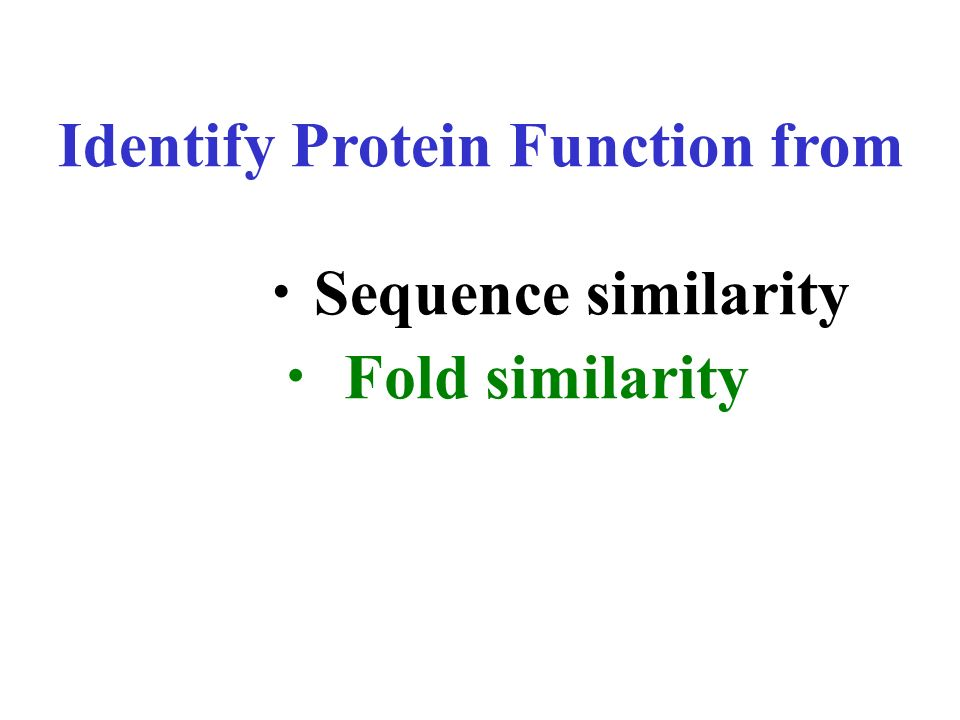 Identify Protein Function from ・Sequence similarity
