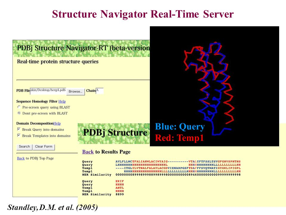 Structure Navigator Real-Time Server